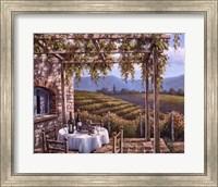 Framed Vineyard Terrace