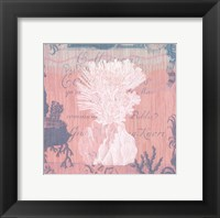 Framed Seaside Coral II
