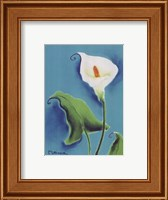 Framed Calla Lily With Blue