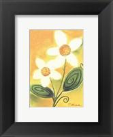Framed Shasta Daisy