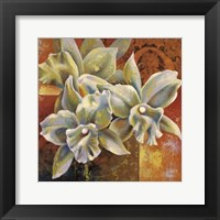Framed Orchid Collage III
