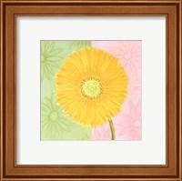 Framed Yellow Daisy