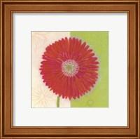 Framed Red Daisy