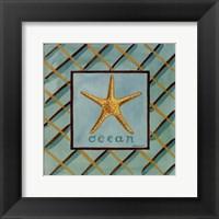 Coastal II Framed Print