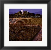 Framed Vines