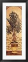 Tuscan Palm II Framed Print