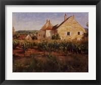 Framed Vineyard Cottages In Jully