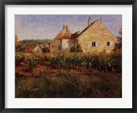 Framed Vineyard Cottages In Jully