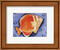Framed White Spotted Island Fish