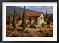 Tuscan Cypress Framed Print