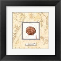 Framed Sea Treasure II - Mini