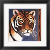 Framed Exotic Tiger - Mini