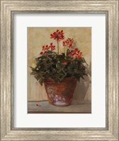 Framed Potted Geraniums I