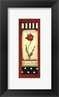 Belgian Tulip II - Petite Framed Print