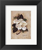 Framed Summertime Magnolia
