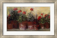 Framed Kathleen's Geraniums