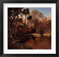 Framed Myakka Sunset
