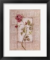 Framed Rosa Antigua ll