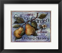 Framed Cottage Garden II