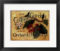 Cottage Garden III Framed Print