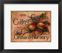 Cottage Garden IV Framed Print
