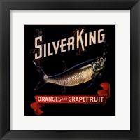 Silver King Framed Print