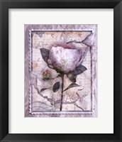 Framed Love Letter Peonies
