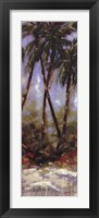 Contempo Palm II Framed Print