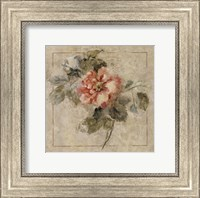 Framed Provence Rose II