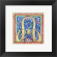 Framed Ornamental a