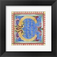 Framed Ornamental C