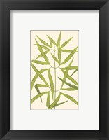 Woodland Ferns I Framed Print