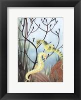 Framed Seahorse Serenade II
