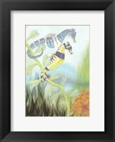 Framed Seahorse Serenade III
