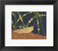 Framed Ornamental Grasshopper I