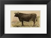 Framed Antique Cow V