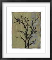 Branch In Silhouette III Framed Print