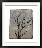 Branch In Silhouette V Framed Print
