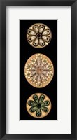 Framed Kaleidoscope Anemone II