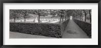Framed Hornbeam Arbor