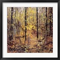Framed Deep Wood October