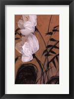 Framed White Blossom I