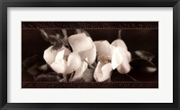 Framed Soft Magnolias II