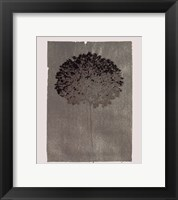 Silver Stem III Framed Print