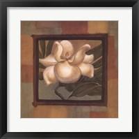 Framed Spring Magnolia I