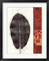 Framed Leaf Study II