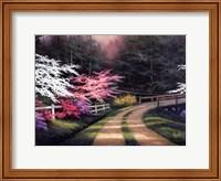 Framed Dogwood Road