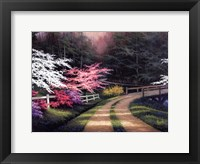 Framed Dogwood Road