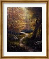 Framed Aspen Beauty