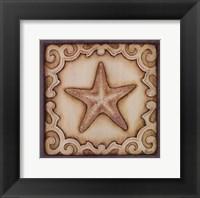 Cottage Starfish Framed Print